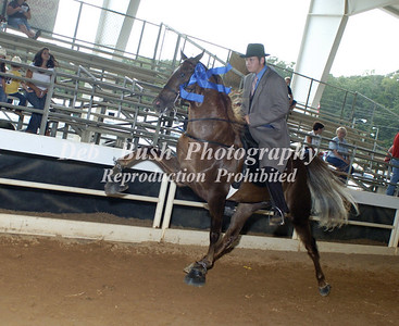 CLASS 8 TWO YEAR OLD AMATEUR