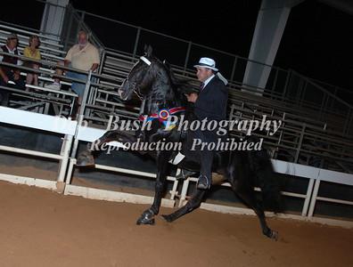 CLASS 36  WALKING HORSE STAKE