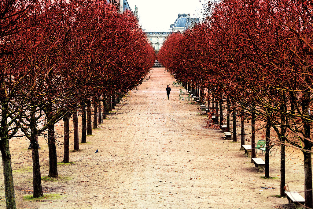Tuilleries_20131211_0002A