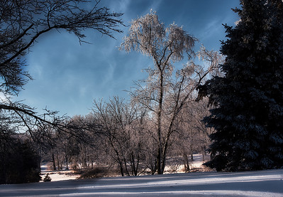 _RC_5178_WinterSceneGalesburgAMFrost_010521_