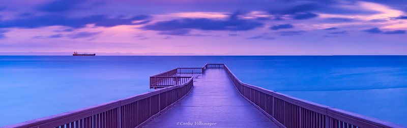 Puente delfinario