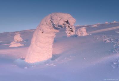 Escultura de invierno 02