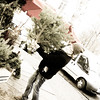 Christmas Tree Shopping!<br /> <br /> Leipzig, Germay<br /> 2012