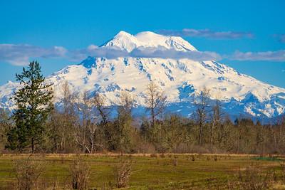 Mt. Hood Looming Large
