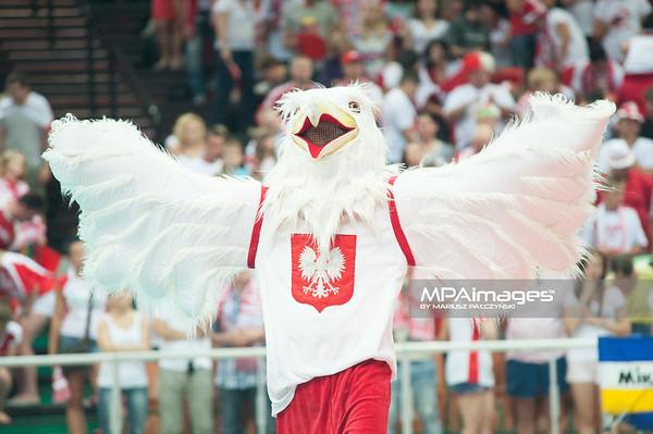 05.07.2013 Katowice , siatkowka , Liga Swiatowa , Polska (biale) - USA (czerwone) N/Z Orzel Fot. Karol Bartnik / MPAimages.com