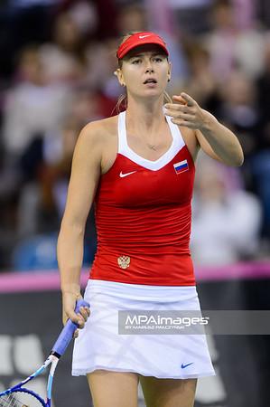 08.02.2015 - Krakow , Krakow Arena , Fed Cup by BNP Paribas , Polska – Rosja , Poland - Russia  N/Z Maria Sharapova  Fot. Mariusz Palczynski / MPAimages.com