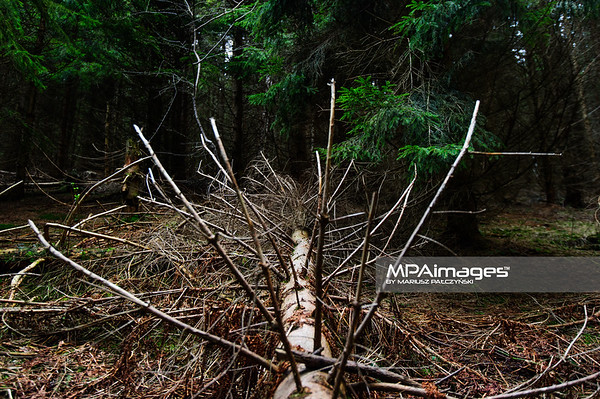 Beskid Zywiecki - Wielka Racza