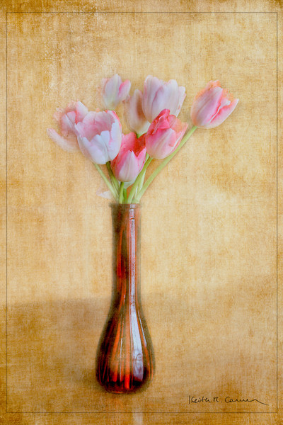 Pink tulips in a vase