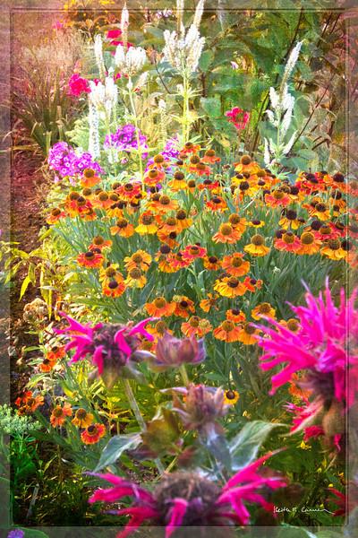 Flower Garden, Andover, Maine