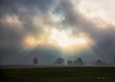 Morning fog and sun, Hadley, Massachusetts