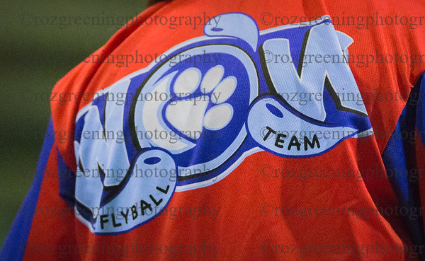 WOW Flyball Team