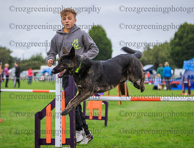 Blenheim Saturday Large Combined 1-2 Agility