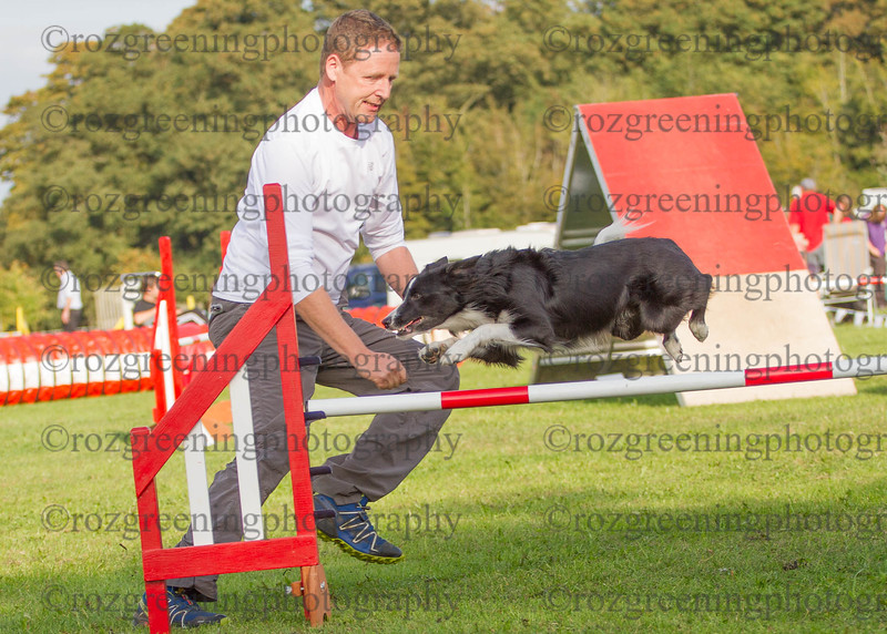 Agility for England Eric 1-111