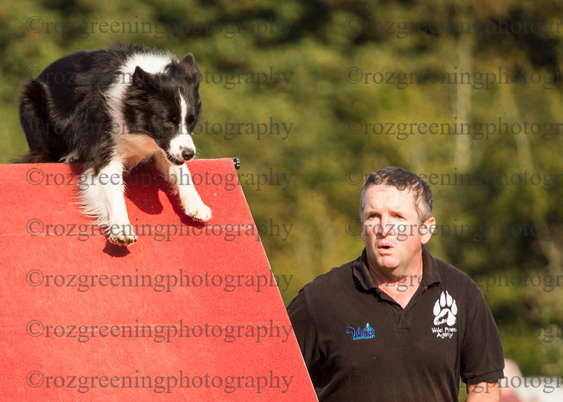 Agility for England Eric 1-138