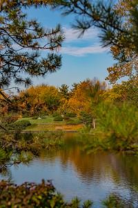 Autumn Garden  14