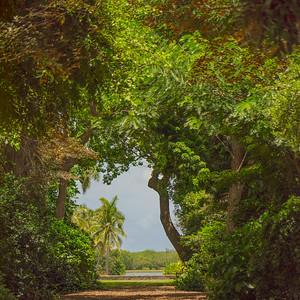 Fairchild Garden    3