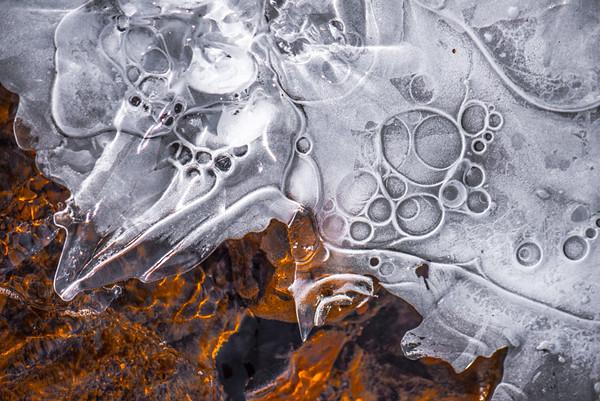 Frozen Assets 16