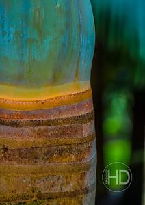 Palm Art   3