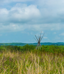 TALL GRASS WITH TEEPEE