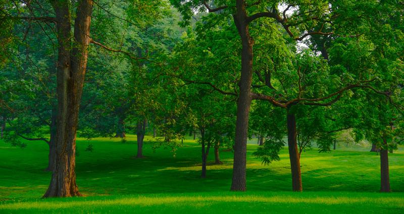 Tilles Park 18