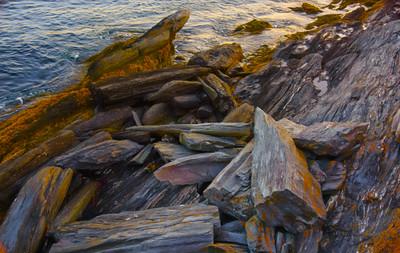 Maine Coast 51