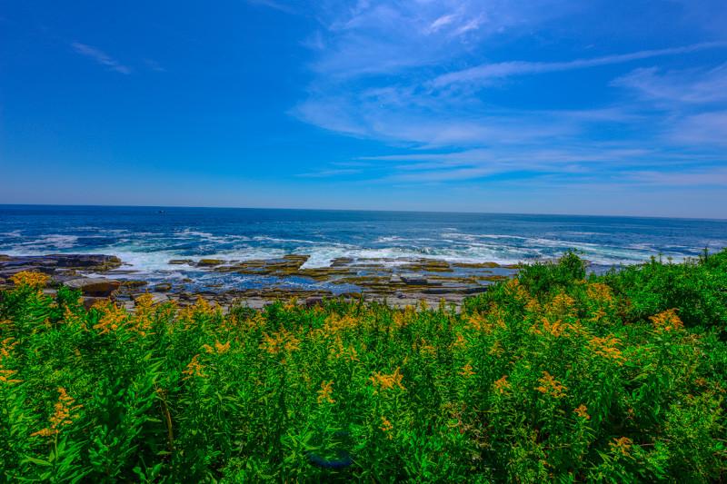 Maine Coast 122