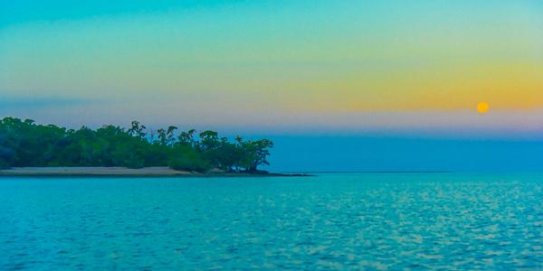 EVERGLADE ISLANDS 24