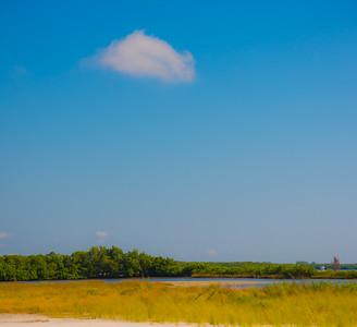 Fort DeSoto Beach 6
