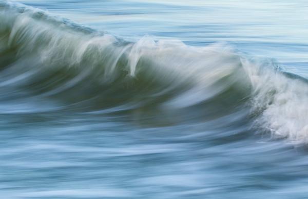 Gulf In Motion 11
