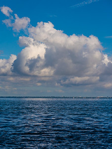 On Tampa Bay 7