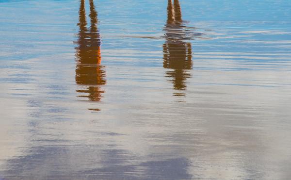 PALM BEACH  9