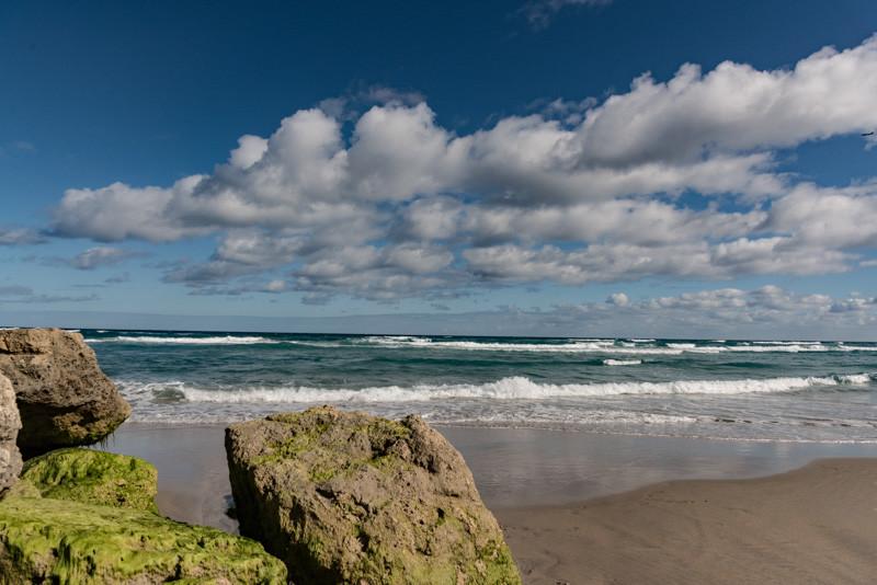PALM BEACH  71