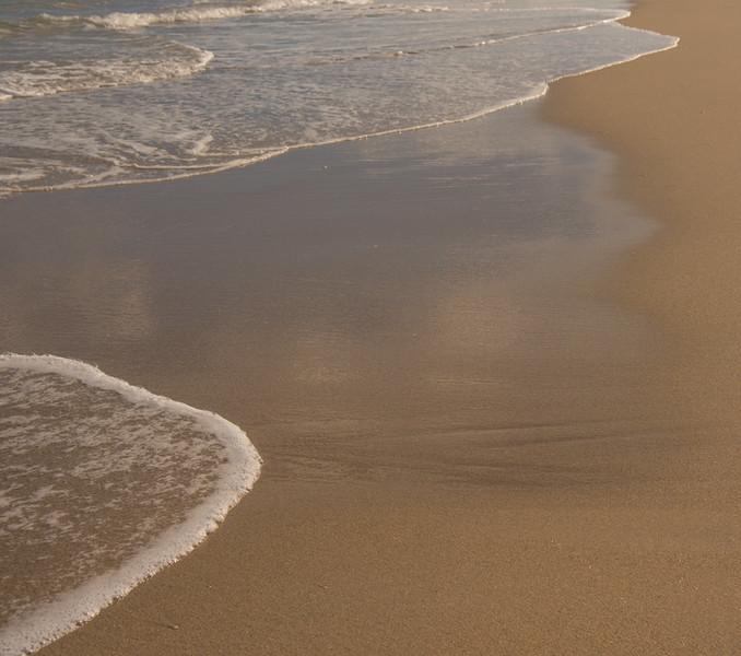 PALM BEACH  76