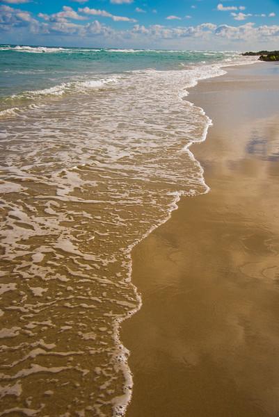 PALM BEACH  80