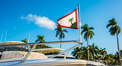Palm Beach 95