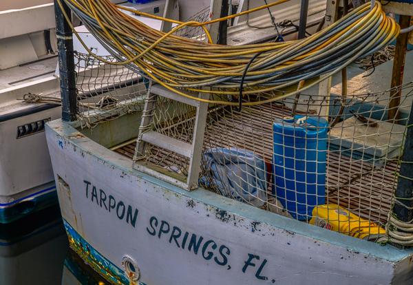 TARPON SPRINGS  13