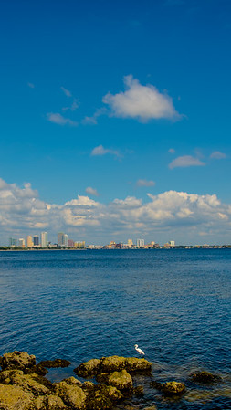 City of Tampa 33