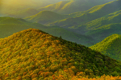 The Appalachians    1