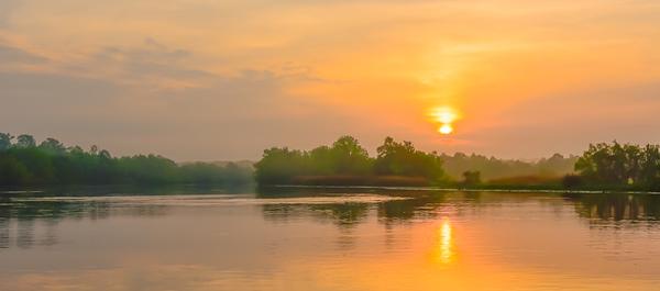 Swamp/Bayou 2