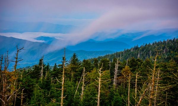 Smoky Mountains 84