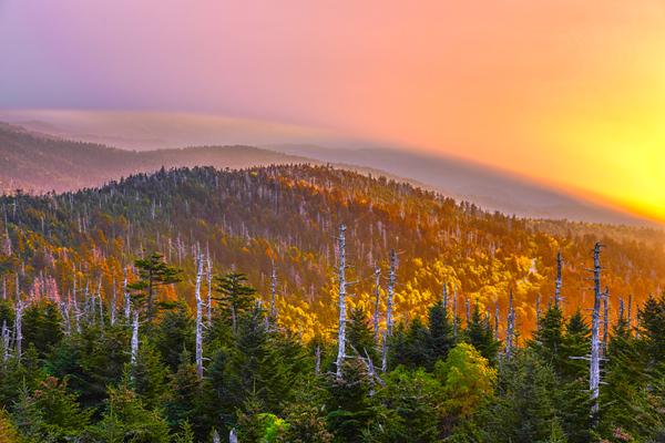 Smoky Mountains 97