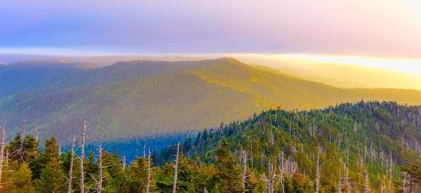 Smoky Mountains 113