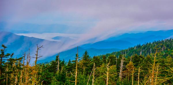 Smoky Mountains 85