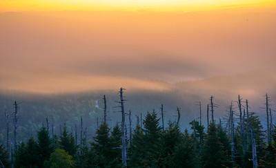 Smoky Mountains 78