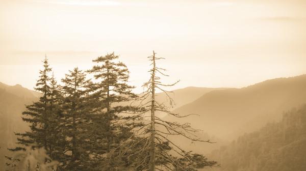 Smoky Mountains 26