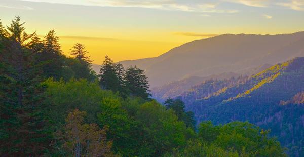 Smoky Mountains 43