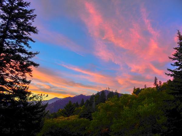 Smoky Mountains 60