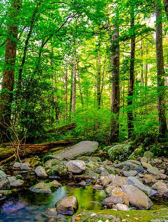 Smoky Mountains 9