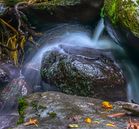 Smoky Mountains 4