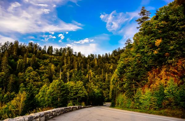 Smoky Mountains 23